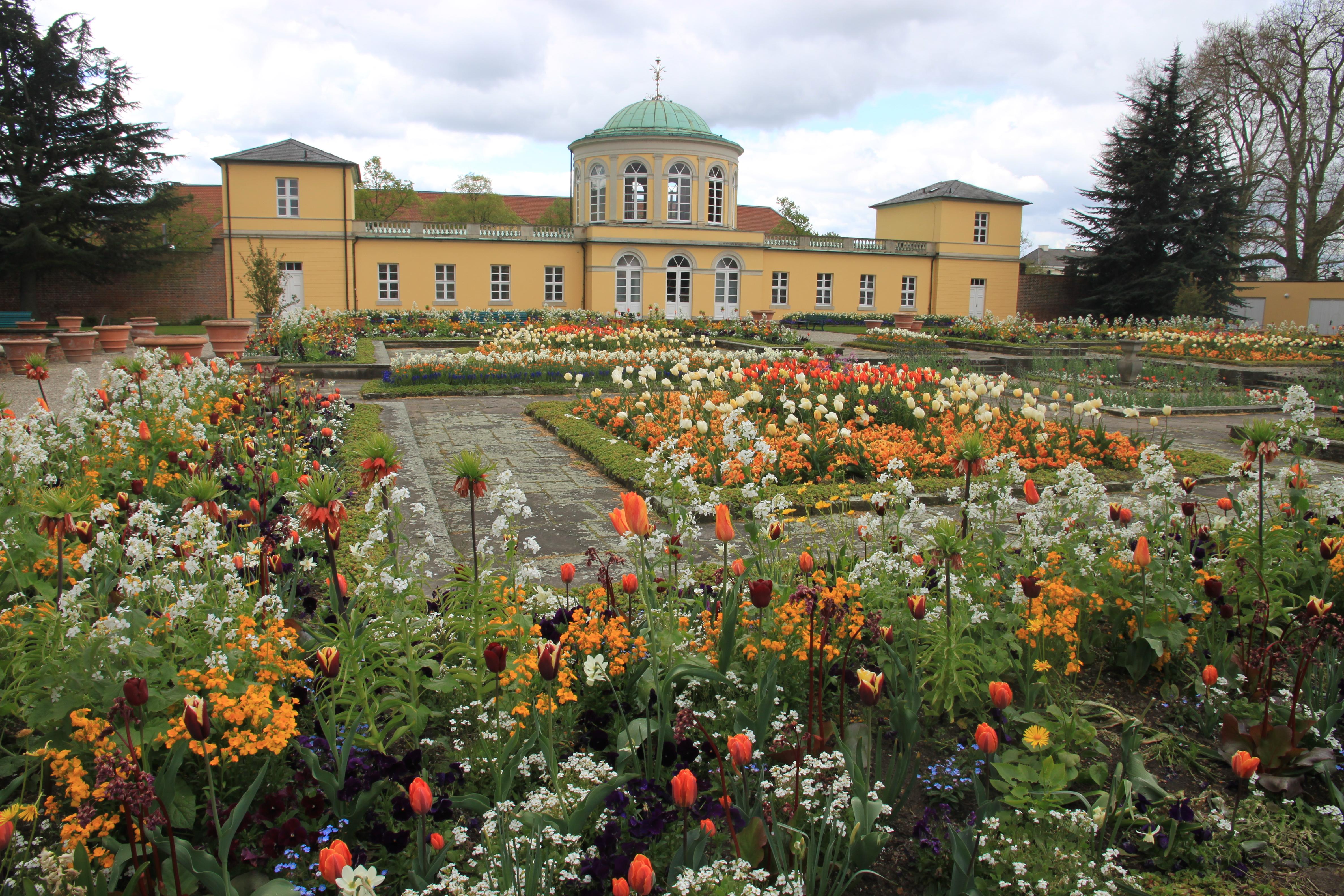Abb. 8: Die Außenanlagen des Berggartens in Frühlingsblüte, (Foto: Heinz Peter Mohrdieck)