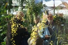 Abb. 3: Im Orchideenhaus oder doch davor? (Foto: Florian Weida)